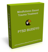 PTSD-Buddy-3Dbox-small